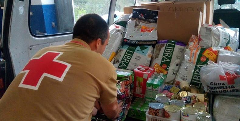 Resultado de imagem para Cruz Vermelha vai ter cinco mil voluntários a ajudar na prevenção dos fogos